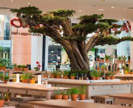 vapiano ouvre un troisieme restaurant a marseille