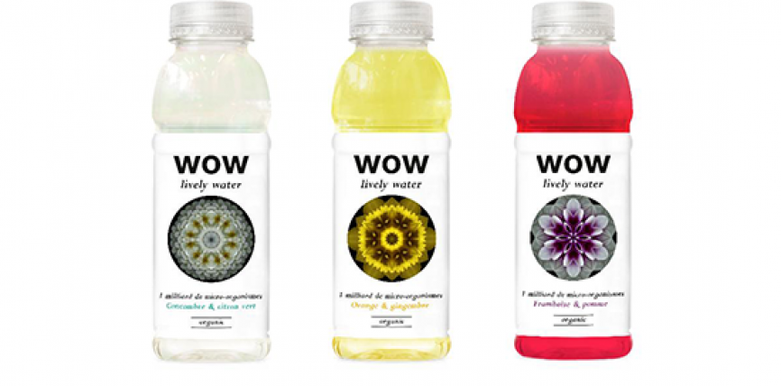 Wow lively water arrive en France