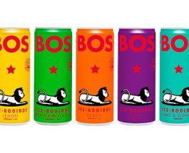 Bos une boisson saine pour l'été